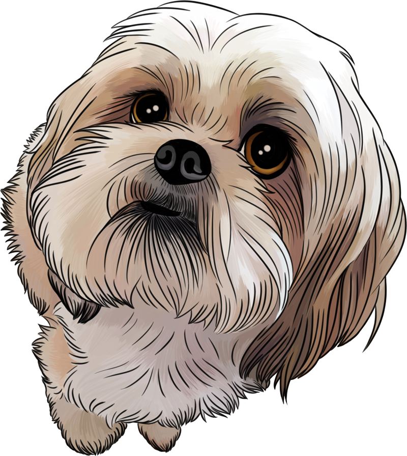 Donnie Dog Transparent