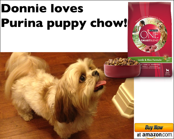 Donnie The Dog Purina Ad