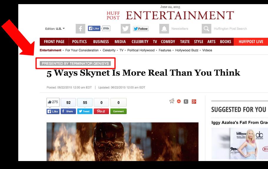 Huffington Post Terminator Advertorial