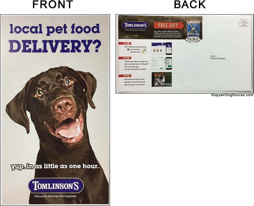 Pet Food Delivery Flyer With Chocolate Lab