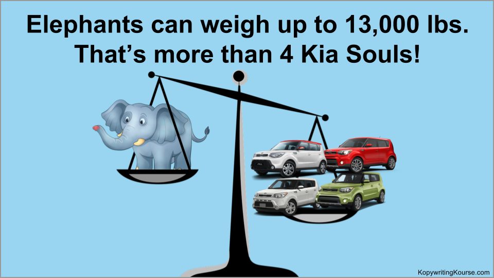 Elephants can weigh up to 13,000 lbs