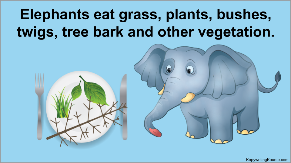 Elephants eat grass-plants- bushes-twigs-tree bark and other vegetation