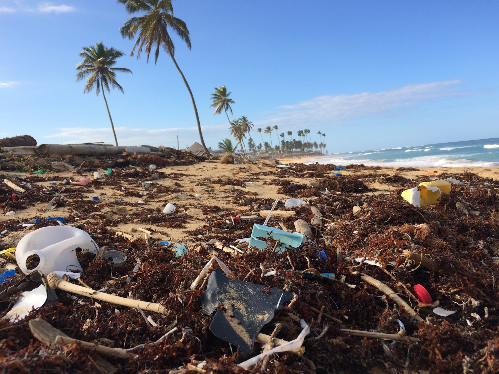 beaches covered in trash