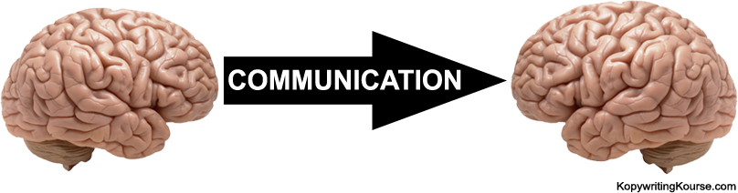 Communicating Brains