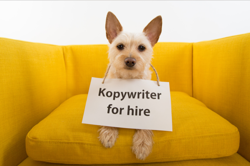 copywriter-for-hire-dog