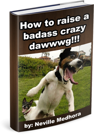 Crazy Dawg Book