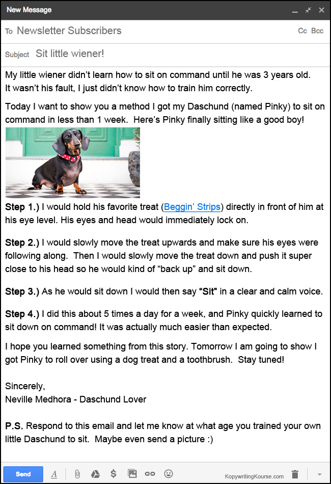 Email newsletter wiener dog daschund example