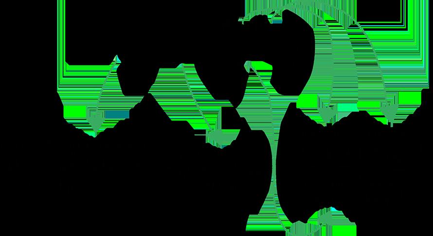 force-gravity-equation-breakdown
