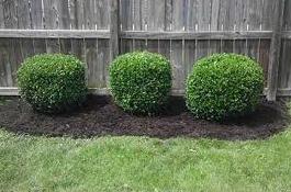 hedging2