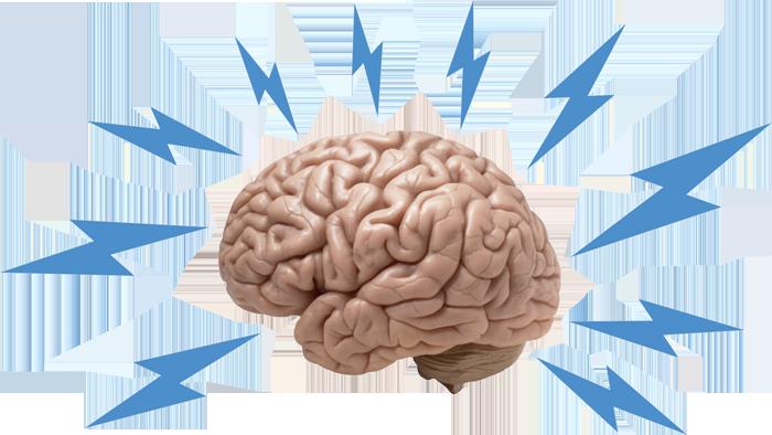 Learn Random Stuff Brain