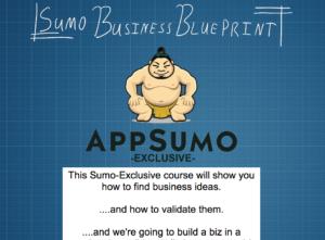 sumo-business-blueprint